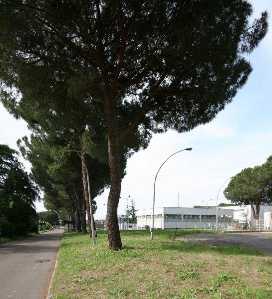 /uploads/archive/foto/Impianto_Casaccia_Esterno_1.jpg